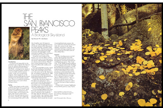 Book Designer-Longfeather Book Design-Magazine Design and
